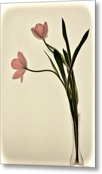 Mauve Tulips In Glass Vase Metal Print