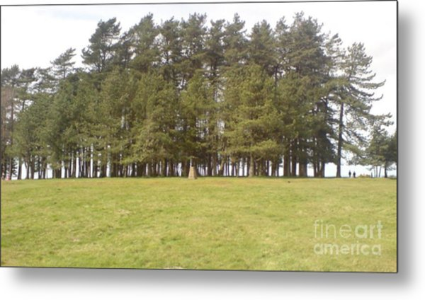 May Hill Tree Tops Metal Print