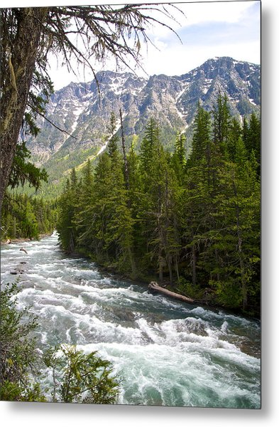 Mcdonald Creek In Glacier Np-mt Metal Print