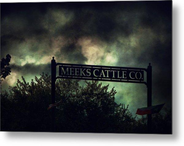 Meeks Cattle Metal Print