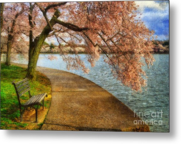 Metal Print featuring the photograph Meet Me At Our Bench by Lois Bryan