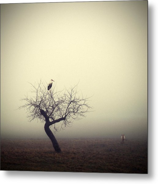 Meeting In The Morning Metal Print by Holger Droste