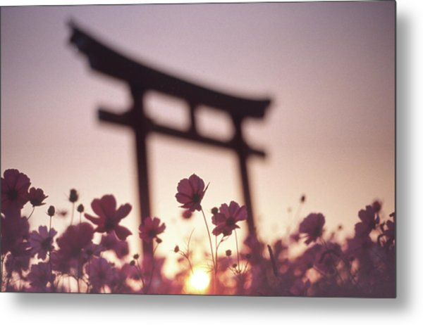 Melancholic Autumn Metal Print by Koji Tajima