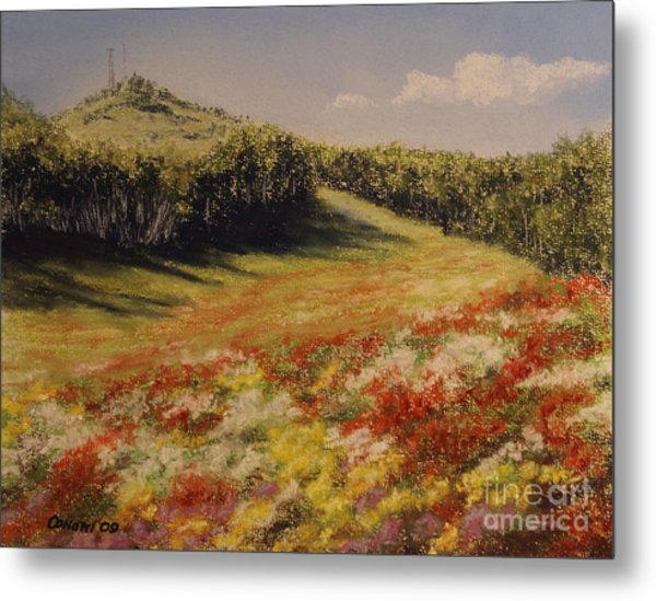 Melkow Trail  Metal Print
