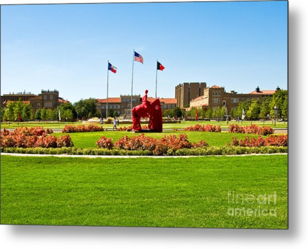 Metal Print featuring the photograph Memorial Circle by Mae Wertz