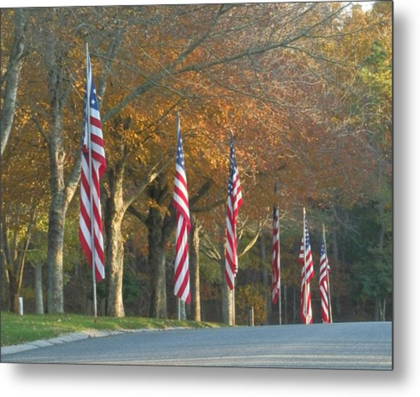 Memorial Drive Metal Print by Heather Sylvia