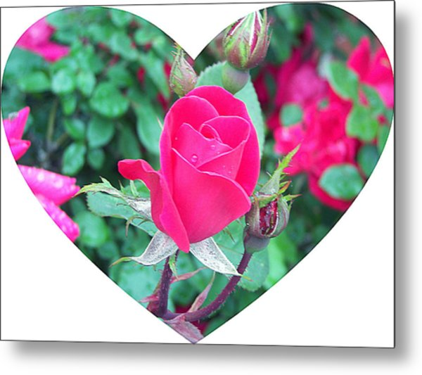 Memory Of A Mother's Love  Metal Print