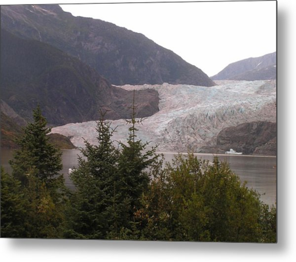 Mendenhall Glacier From The Path. Metal Print