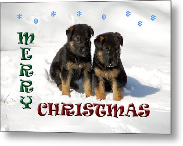 Merry Christmas Puppies Metal Print