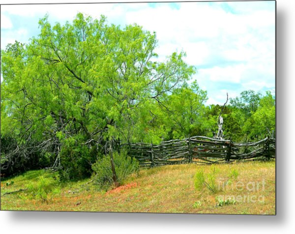Mesquite Tree And Cedar Post Fence Metal Print