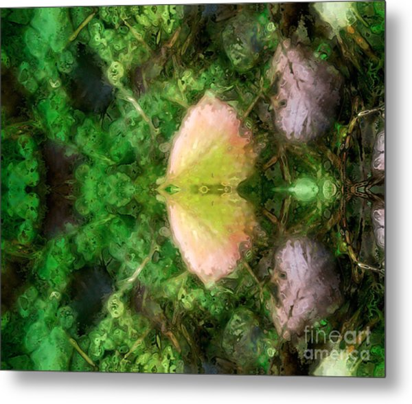 Metamorphosis 1  Metal Print