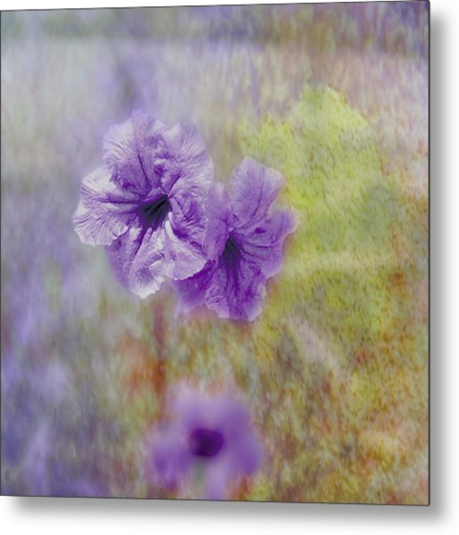 Metal Print featuring the photograph Mexican Petunia by Judy Hall-Folde