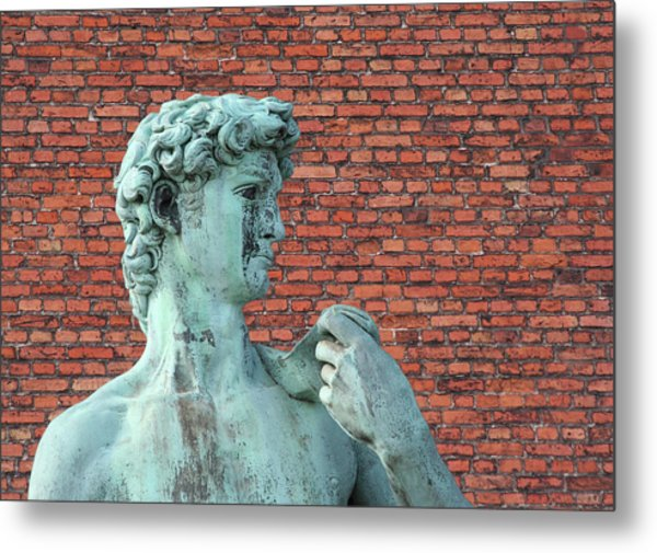 Michelangelos David Metal Print