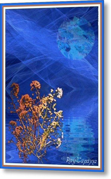 Midnight Flowers Metal Print by Ray Tapajna