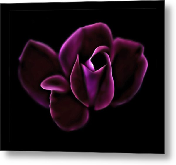 Midnight Knockout Rose Metal Print