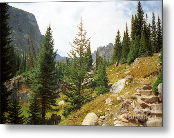 Mill Lake Metal Print