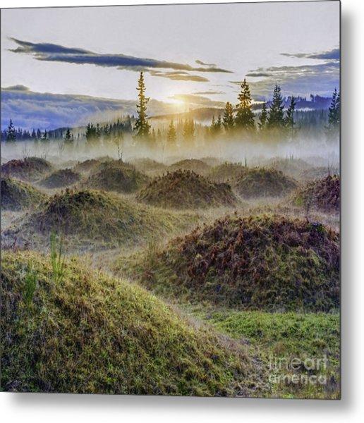 Mima Mounds Mist Metal Print