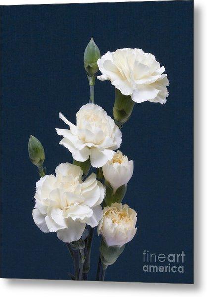 Mini Carnations Metal Print
