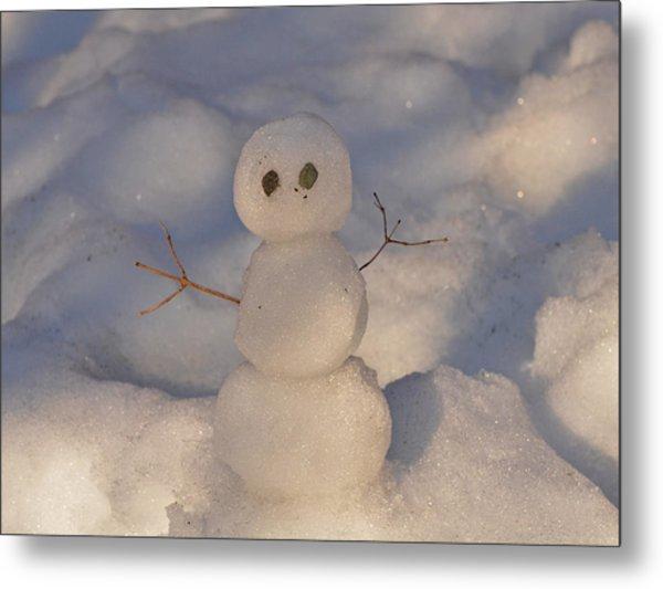 Miniature Snowman Landscape Metal Print
