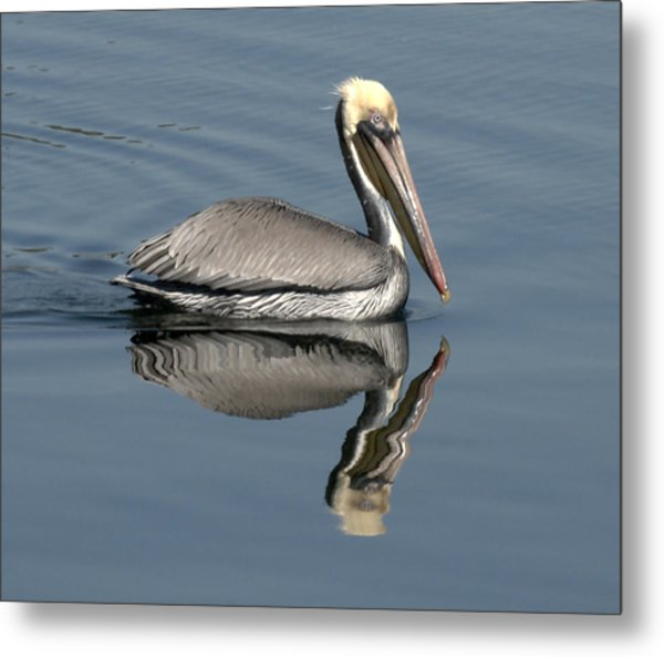 Mirror Pelican Metal Print