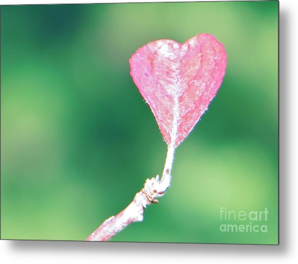 Miss Lonely Heart Metal Print