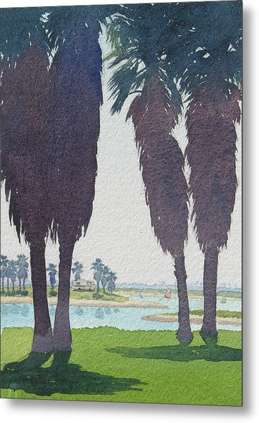 Mission Bay Park With Palms Metal Print