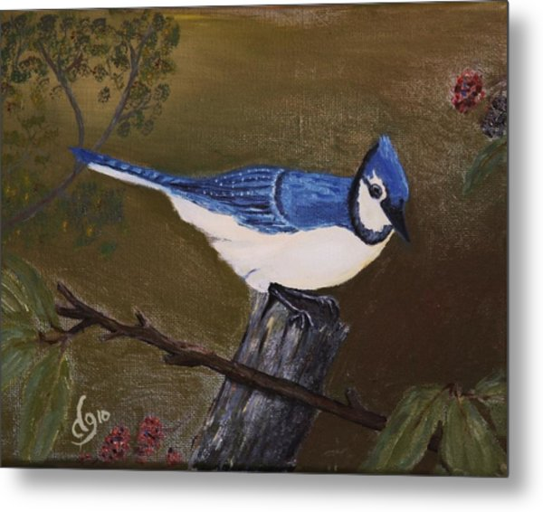 Missouri Blue Jay Metal Print