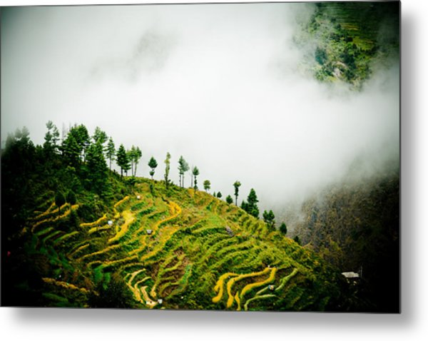 Mist In Mountain Himalayas Color Metal Print