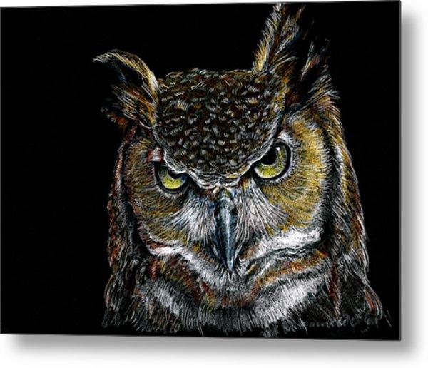 Mister Owl Metal Print