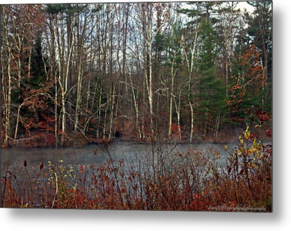 Misty Autumn Morning Metal Print by Catherine Melvin