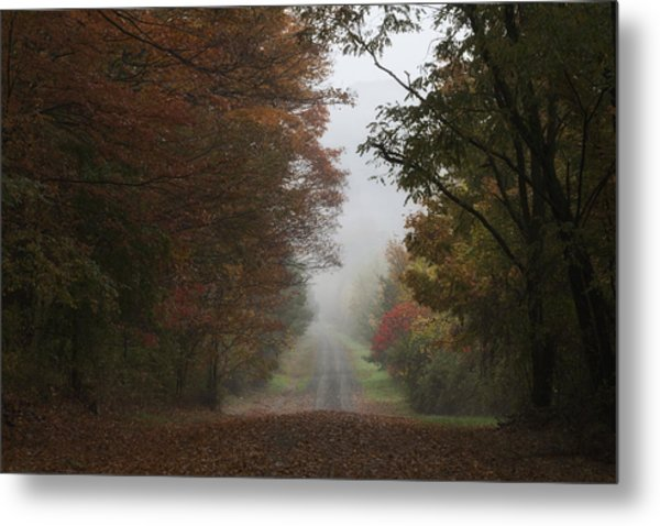 Misty Fall Morning Metal Print