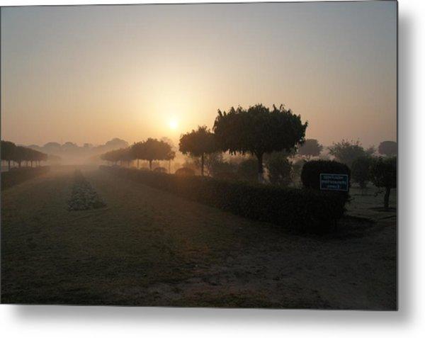 Misty Garden In The Morning Light Metal Print