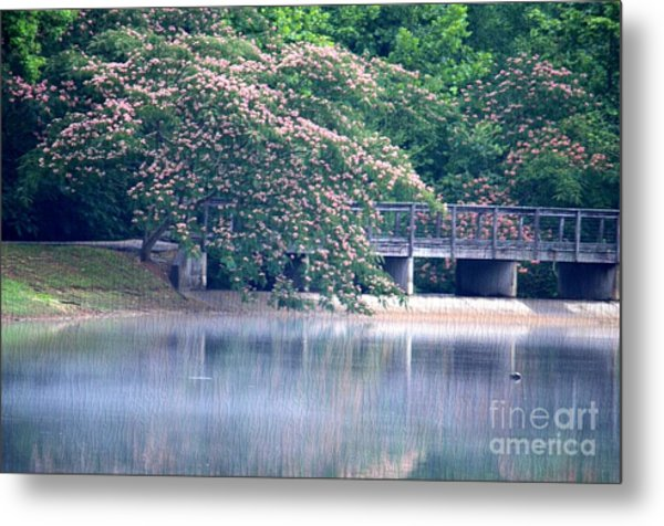Misty Mimosa Reflections Metal Print