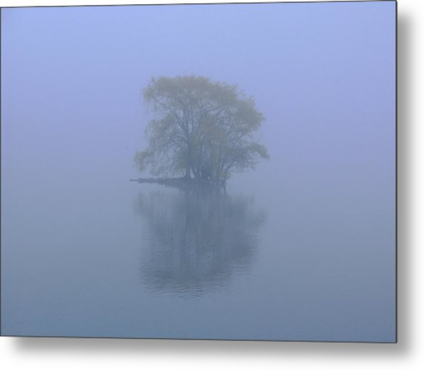 Misty Morning At Jamaica Pond Metal Print