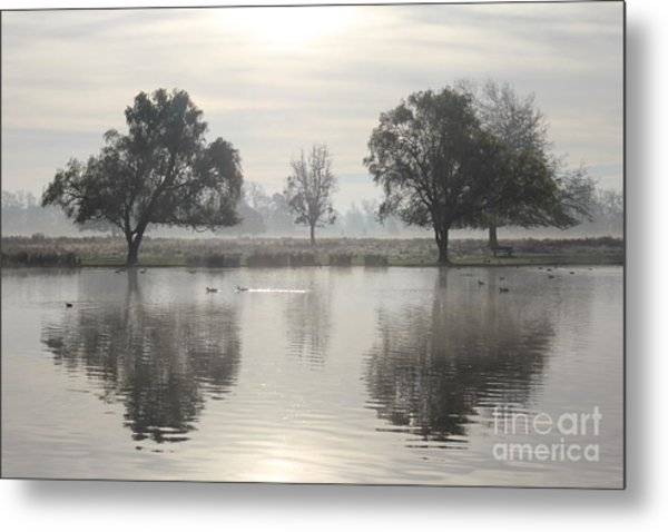 Misty Morning In Bushy Park London 2 Metal Print