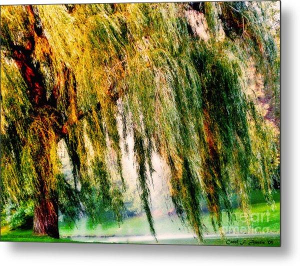 Misty Weeping Willow Tree Dreams Metal Print