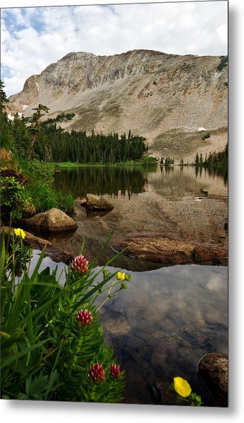 Mitchell Lake Reflections Metal Print