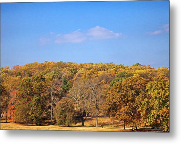 Mixed Fall Metal Print