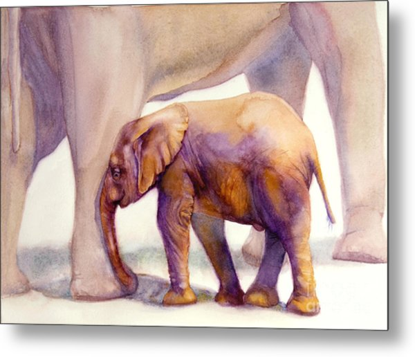 Mom And Baby Boy Elephants Metal Print