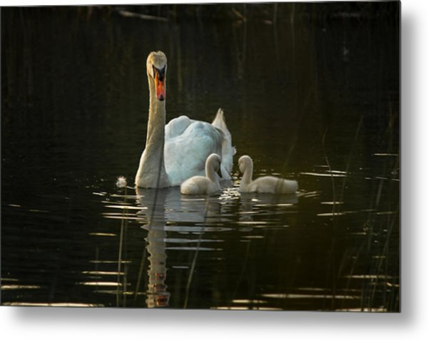 Mom And The Kids Metal Print