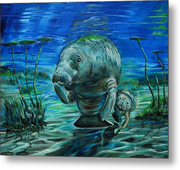 Metal Print featuring the painting Momma Manatee by Steve Ozment