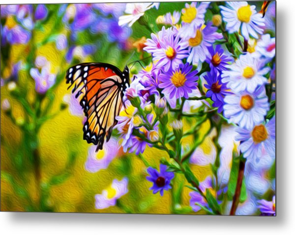 Monarch Butterfly 4 Metal Print