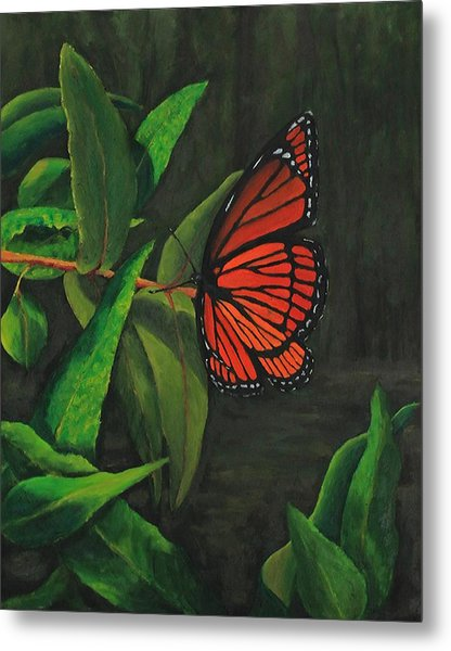 Viceroy Butterfly Oil Painting Metal Print