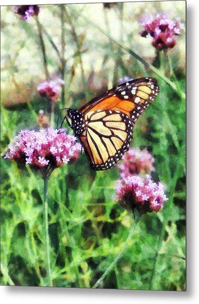 Monarch Butterfly On Pink Lantana Metal Print by Susan Savad