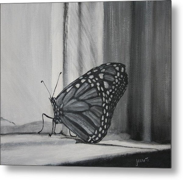 Monarch In The Window Metal Print