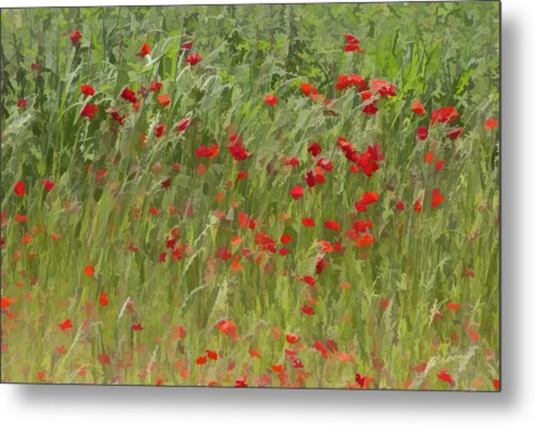 Monet Poppies IIi Metal Print
