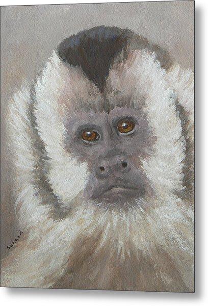 Monkey Gaze Metal Print