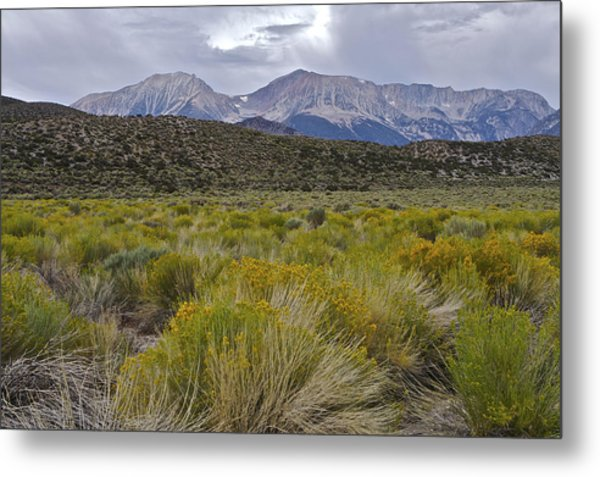 Mono Basin Lee Vining 1 Metal Print