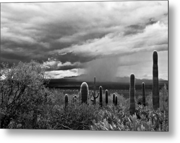Monsoon Metal Print