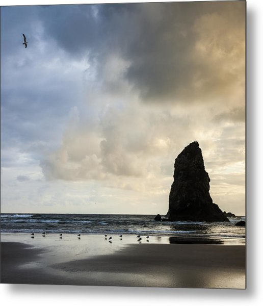 Monster's Tooth Metal Print